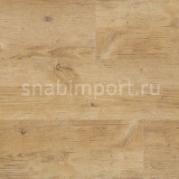 Противоскользящий линолеум Polyflor Expona Control Wood PUR 6501 Blond Country Plank