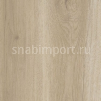 Дизайн плитка Amtico Spacia Wood SS5W1010
